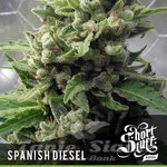 SHORT STUFF SEEDBANK - Auto Spanish Diesel