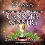 DELICIOUS SEEDS - Gourmet Collection Cannabis Winners 1