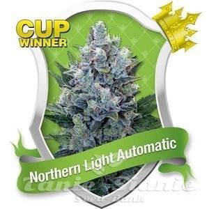 ROYAL QUEEN SEEDS - Northern Light Automatic®